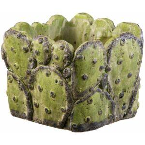 Virágláda kocka Cactus 6cm