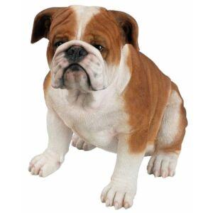 Bulldog 44cm