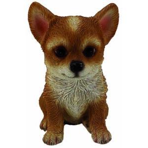Chihuahua mignon 6cm