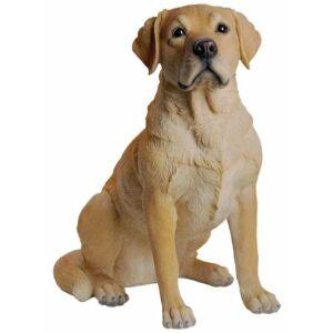 Labrador 54cm