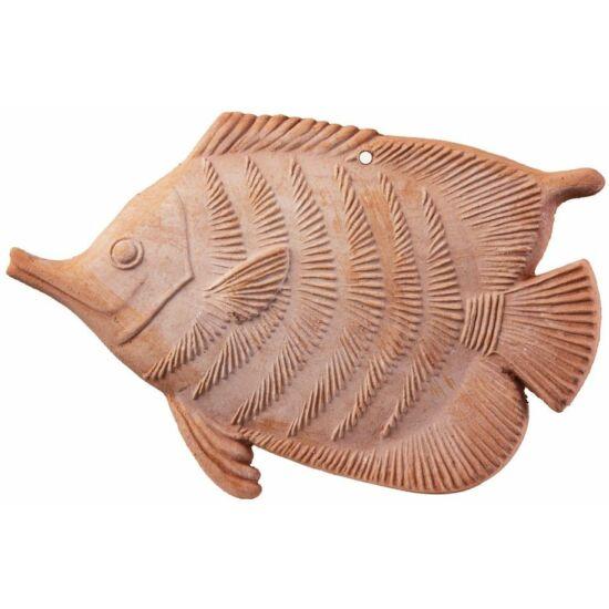 Hal nagy 22cm