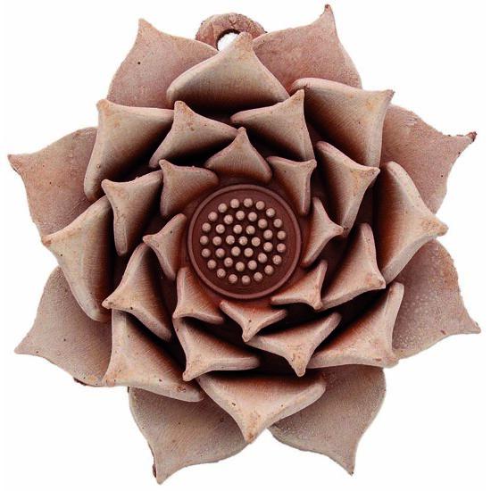 Rosa 15cm
