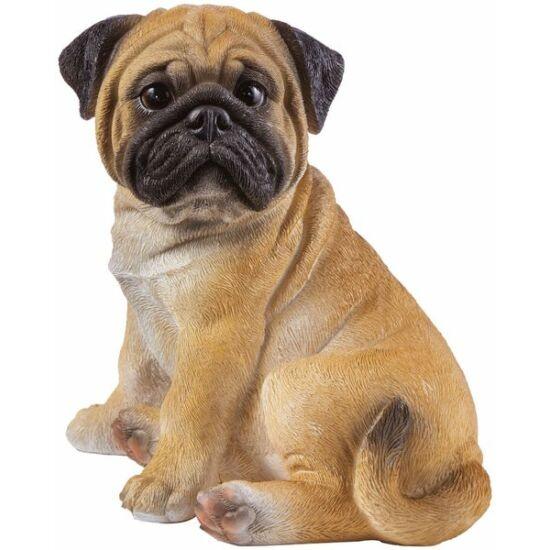 Bulldog Giasone 20cm