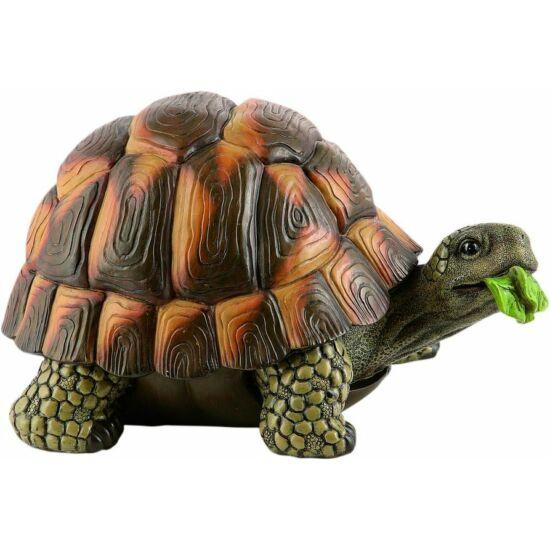 Teknős 24cm
