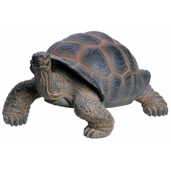 Teknősbéka 46cm